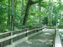 Photo of Daniel Boone Arboretum